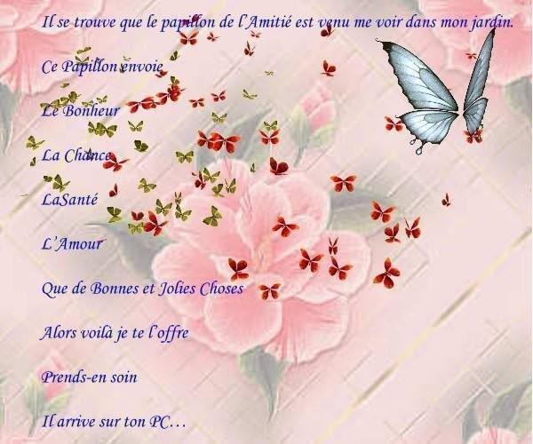 Roses,Papillon,Douceur - Citation Amitié § Chansons. Biz.