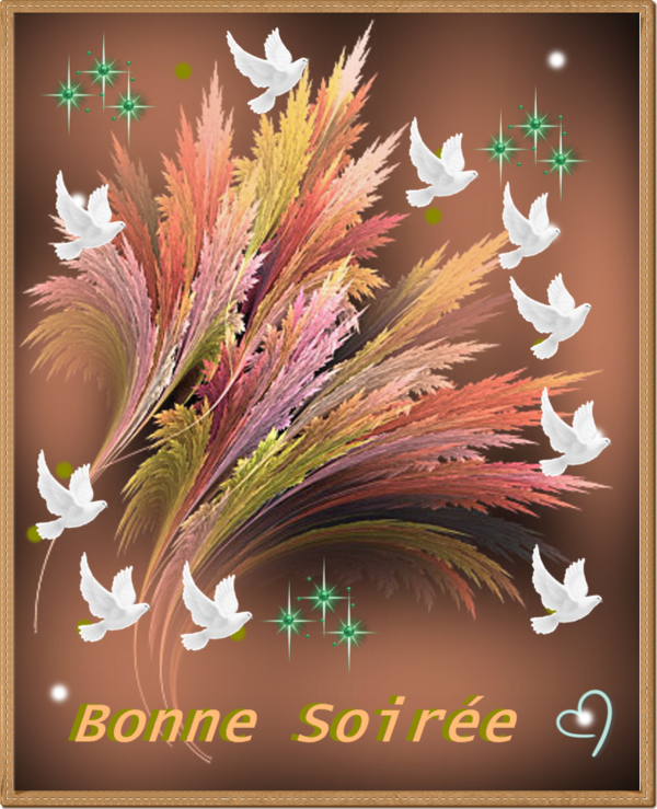 Plante Martine 17/04 - Bravo Ajonc Bd77ffff